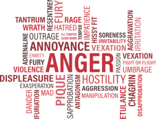 Anger Management Series